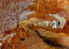 El Parque Aktun Chen ofrece a sus visitantes tres de los más increíbles tours en Cancún en uno solo: Aktun Chen Expedition. Haz tirolesas, nada y haz snorkel en el Cenote Aktun Chen, y además disfruta una interesante caminata por una serie de cuevas.