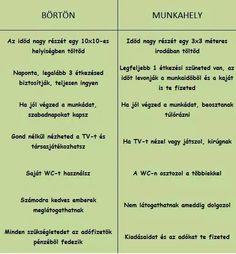 Börtön vs. Munkahely Funny Pins, Funny Memes, Jokes, Natural News, Cringe, Sentences, Laughter, Haha, Comedy