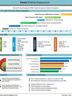 Vamsi Krishna PictoCV Infographic