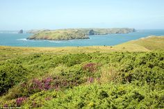 Colourful: Taking in the coastal scenery of the Marloes Peninsula in Pembrokeshire (pictured) was named as the number five best stroll