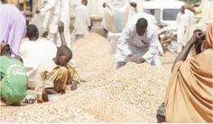 Just before Ramadan the Islamic fasting season food prices across the country hiked making it difficult for many Nigerians to afford what they ordinarily should. A visit to Dawanau International Grain Market in Kano State revealed that the price of food commodities have been experiencing fluctuations throughout this year especially commodities like rice and beans. A hundred kg of maize now sells at N16 000 to N17 000 as against N7 000 in the last three years. The same goes for a 50kg bag of…