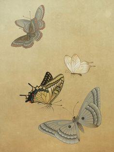 세로 길이 180cm Korean Painting, Chinese Painting, Chinese Art, Butterfly Painting, Butterfly Art, Butterflies, Korean Art, Asian Art, Japanese Prints
