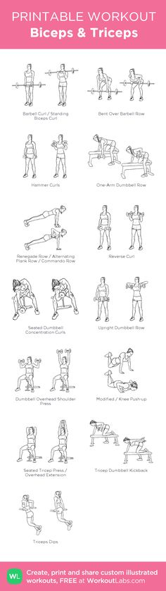 Biceps & Triceps:my visual workout created at WorkoutLabs.com