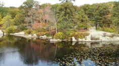 Harriman State Park // New York