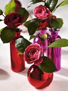camellias.  love!