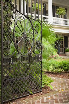 Open Gate and Palmetto, Charleston, SC © Doug Hickok All Rights ReservedMore here… hue and eye
