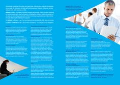 Netserv rebrand brochure design (centre spread)