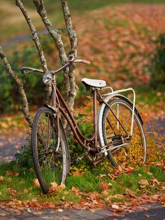 Old bike by Ernst Vikne on Flickr.