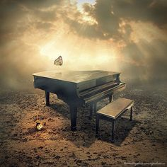 Music, like butterflies.....voices of the soul.   Latest Photo Manipulations by Even Liu
