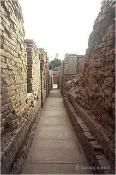 A street in Mohenjo-daro. The doors of later buildings can be seen in the upper levels of the wall to the left. The gradual tapering of the walls in the far right was an intentional architectural feature to avoid collapse of the upper floors. Bronze Age Civilization, Indus Valley Civilization, Ancient Egypt, Ancient History, Harappan, Mohenjo Daro, Ancient Mysteries, History Mysteries, The Secret History