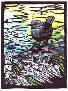 Dipper, woodcut, bird woodcut, American dipper, woodblock print