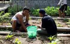 Balinese foundation treats autistic children with organic food http://news.organicfoodmaps.com/11R  More news http://organicfoodreport.com #news #organic #food #gmo