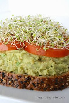 The Garden Grazer: Chickpea Avocado Mash with Lemon