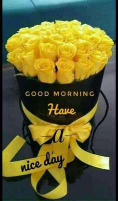 Good Morning Messages: If you like to share Good Morning with your family, relatives, lover & friends. Find out unique collections of Good Morning Msg, best good morning messages for friends in Hindi, morning love messages. Good Morning Roses, Good Morning Sunshine, Good Morning Good Night, Good Morning Images Flowers, Good Morning Messages, Good Morning Greetings, Morning Quotes, Morning Pics, Morning Pictures