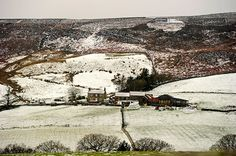 cold  uk weekend weather: Snow covered fields on Carlton Bank in the Cleveland Hills, North Yorkshire