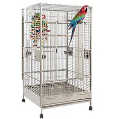 This high quality Nova 1 Solid Flat Top Parrot Cage - Stone has all the features your Parrot has come to expect, including perches, feeders, wheels and more. Check it out now. For and similar sized birds. Parrot Cages For Sale, Large Parrot Cage, Large Bird Cages, Parrot Pet, Parrot Toys, Macaw Cage, Amazon Parrot, African Grey Parrot, Cockatoo