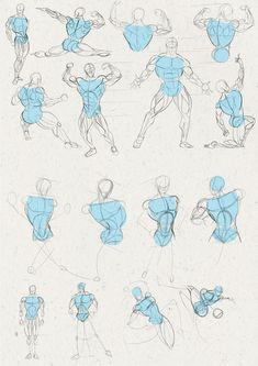 Anatomy Drawing Reference Male anatomy practice by Juggertha - Human Anatomy Drawing, Gesture Drawing, Guy Drawing, Anatomy Art, Drawing Practice, Drawing Poses, Drawing Tips, Male Figure Drawing, Figure Drawing Reference