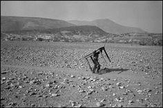 Abbas   MÉXICO Estado de Guerrero. Vila de San Augustin de Oapan. Homem sob uma mesa no deserto. 1984.