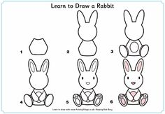 Learn to draw a rabbit