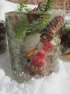 Nature Ice Sculpture Craft.  Can be displayed outside your front door during winter!