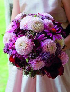 fleurs mariage été-automne de dahlias (floraison juin-octobre)