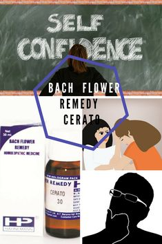 Buy Bach Flower Remedy Cerato for Confirmation, Hahnemann Pharma - Homeopathy Remedies Chestnut Bud, Bach Flowers, Homeopathy Medicine, Switch Words, Homeopathic Remedies, Holistic Healing, For Your Health, The Cure, Self