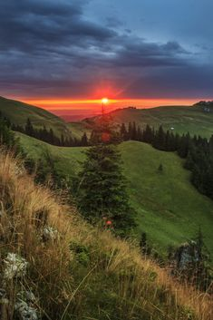 am impodobit bradul - Rarau,Suceava,Romania Summer Photos, National Geographic Photos, Your Shot, Country Living, Romania, Amazing Photography, Beautiful Places, Scenery, Places To Visit