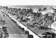 Florida Memory - Lummus Park and Ocean Drive