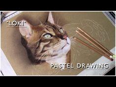 "▶ Beautiful Bengal Cat ""Loki"" - Pastel Drawing   Speed Art Painting - YouTube"