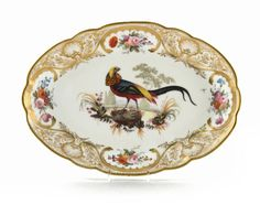 A good Nantgarw oval dish from the Mackintosh service c.1818-20, the well painted with a Golden Pheasant standing on a grassy tussock, the rim with panels of flowers within gilt scrolls & scallop shells, impressed Nantgarw CW mark, 29.6cm. The painting on plates & dishes from this service is now believed to have been executed by Thomas Martin Randall at the establishment of Messrs. Robins & Randall, after engravings from Le Vaillant of Paris (c.1801-06).