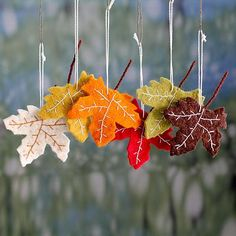 Wool ornaments, 'Maple Glory' (set of 6) - Handcrafted Holiday Leaf Ornaments from India Set of 6 (image 2)