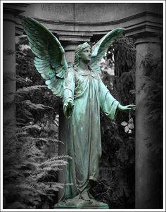 {Don't Blink} Bronze angel statue #dontblink #weepingangel #sculpture