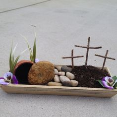 Resurrection garden, I really want to create  one of these this year.