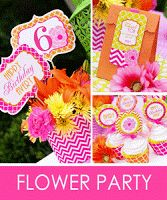 Amanda's Parties To Go: Parties