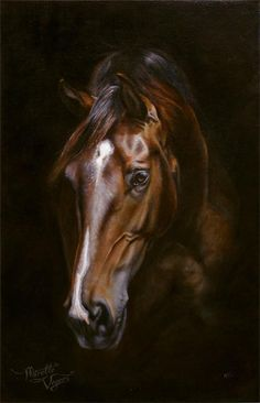 """""""Miss"""" - commissioned equine artwork - oil on linen by Mirelle Vegers"""