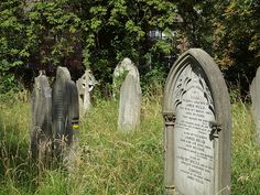Brockley Cemetary London [shared]