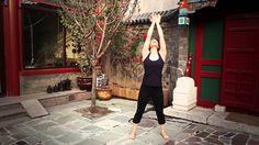 (Qi gong) 12 min video- (wood, fire, earth, metal, water Elements) Qigong Practice to balance the organs. Tai Chi Chuan, Tai Chi Qigong, Pranayama, Ayurveda, Tai Chi Video, Reiki, Aikido, Chi Energy, Mudras