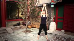 5 Element Qigong Practice for Fire (heart, small intestine, pericardium,...