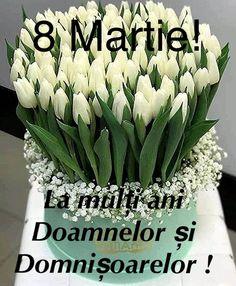 8 Martie, Mariana