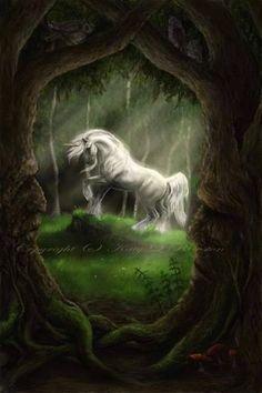 Unicorn pictures, The Glade by Katy L Rewston Fantasy Unicorn, Unicorn And Fairies, Real Unicorn, The Last Unicorn, Unicorn Art, Majestic Unicorn, Mythical Creatures Art, Mythological Creatures, Magical Creatures