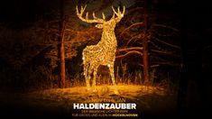 Haldenzauber: a magical, light-filled experience in Hückelhoven for all ages Giraffe, Age, Seasons, City, Festive, Destinations, Animals, Lighting, Felt Giraffe