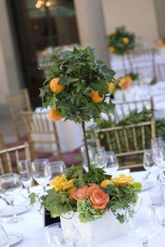 Ivy Topiary with Orange