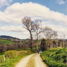 Día de #senderismo en la campiña francesa. Caminando y... de http://ift.tt/2qdX9Im