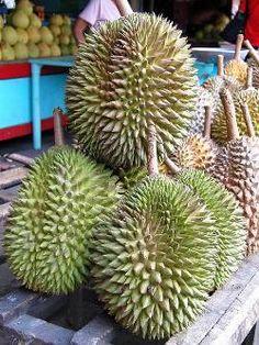 Google Image Result for http://www.blogcdn.com/www.gadling.com/media/2011/03/indonesian-food-durian.jpg