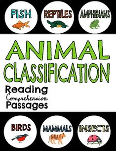by life in the library Reptiles And Amphibians, Mammals, Classroom Activities, Classroom Ideas, Animal Classification, Reading Comprehension Passages, Character Education, Cut And Paste, Small Groups