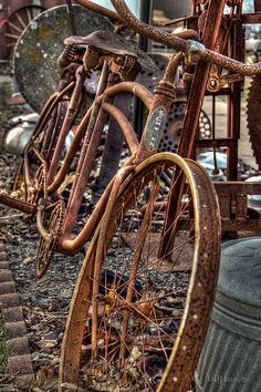 bikeengines-com: Vintage Schwinn rusty tandem bicycle Velo Retro, Velo Vintage, Vintage Bicycles, Old Bicycle, Old Bikes, Tandem Bicycle, Bicycle Art, Abandoned Buildings, Abandoned Places