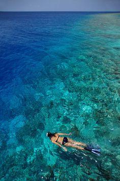 Snorkeling // Maldives #soundfreaq #chromatics #summer