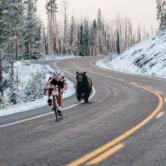 Ce qui s'appelle faire la course en tête, ou le col qui a vu le cycliste qui a vu l'ours !