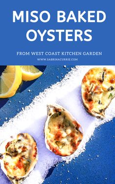 Miso Baked Oysters Quick Easy Japanese Style Recipe Raw Oysters, Fried Oysters, Oyster Recipes, Asian Recipes, Ethnic Recipes, Seafood Recipes, Appetizer Recipes, Appetizers, Fish Recipes