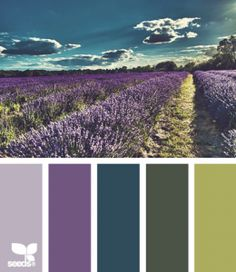purple and green inspiration palette | Color Inspiration – Purple, Green and Teal
